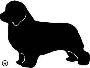 Associazione Dei dell'acqua Onlus, logo Terranova