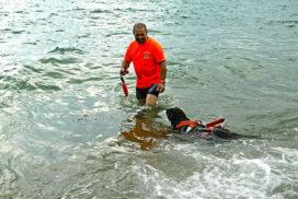 Salvataggio Nautico Associazione Dei dell'acqua