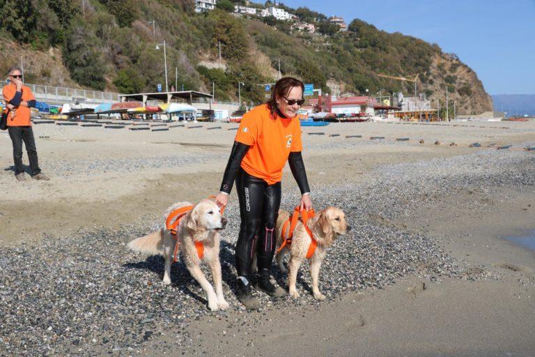 Associazione Dei dell'acqua Onlus, cani da salvataggio