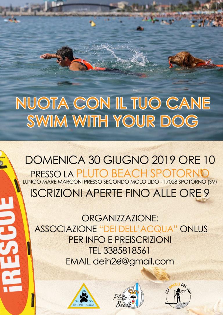 Nuota con il tuo cane