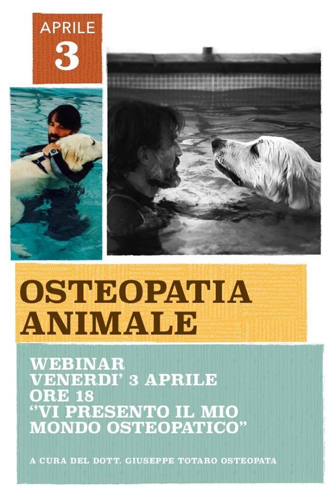 Trattamento del cane- osteopatia animale - Dott Totaro